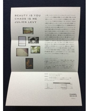 Julien Levy - Beauty is You, Chao is me - 2014