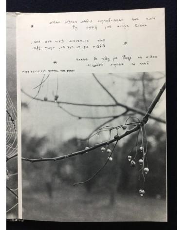 Peter Merom - The Dew, La Rosee - 1960