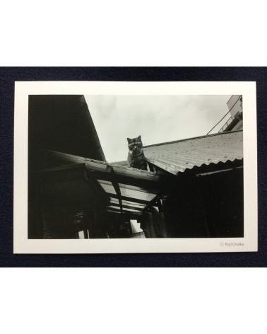 Koji Onaka - Lucky Cat - 2013