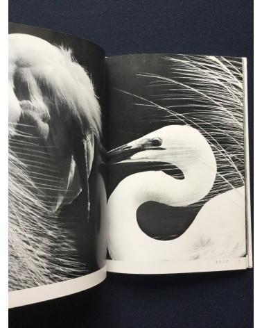 Tokutaro Tanaka - Iwanami Graphics 3 - 1984
