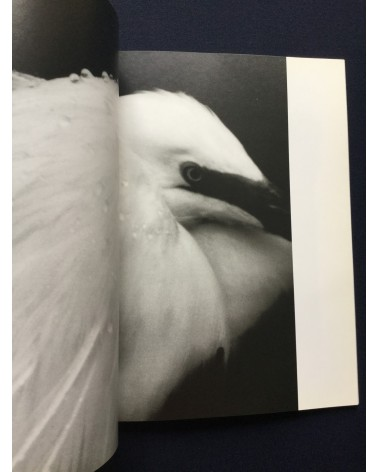 Tokutaro Tanaka - Photo Salon, The Snowy Egret Poetry In Flight - 1989