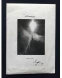 Mark Borthwick - Will Shine Light Up - 2011