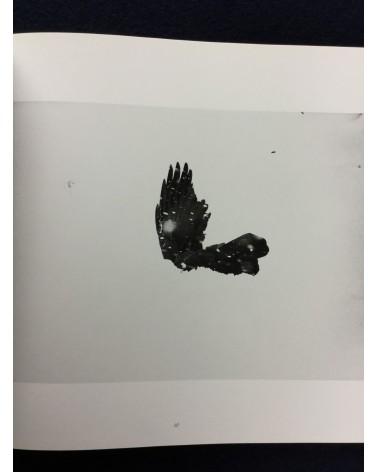 Masahisa Fukase - Ravens - 1986