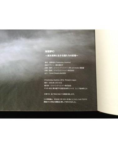 Toshimitsu Hoshino - Umineko Mugen - 2016