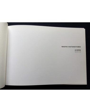 Naoya Hatakeyama - A Bird Blast 130 - 2006
