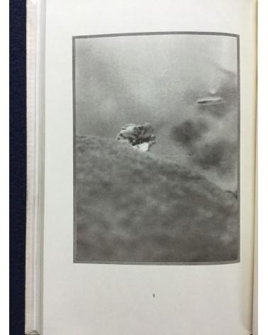 Shinzo Fukuhara - Light with its Harmony - 1923
