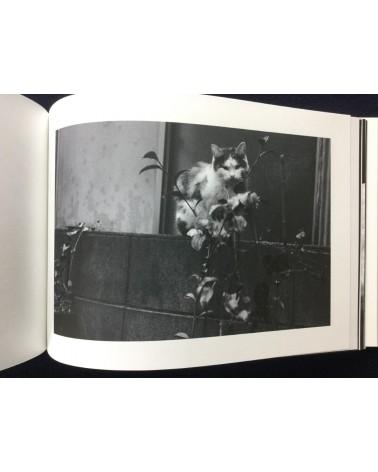 Koji Takiguchi - Sharpening of a Cat's Claw - 2017
