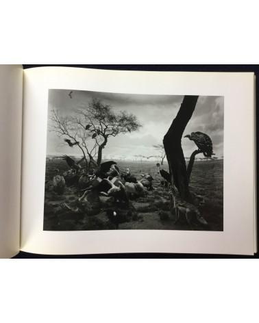 Hiroshi Sugimoto - Dioramas, Theaters, Seascapes - 1988