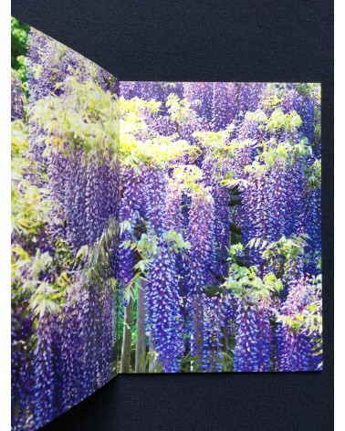 Mika Ninagawa - Earthly Flowers, Heavenly Colors - 2017