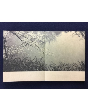 Miho Kajioka - And, Where did the Peacocks go? - 2016