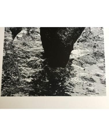 Hiroshi Hamaya - Woman Planting Rice, Toyama, 1955 - 1991