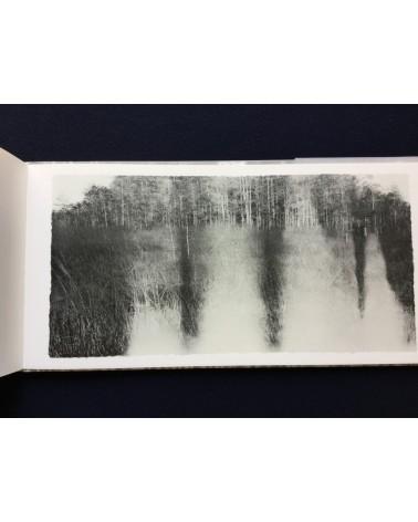 Jungjin Lee - Everglades - 2016